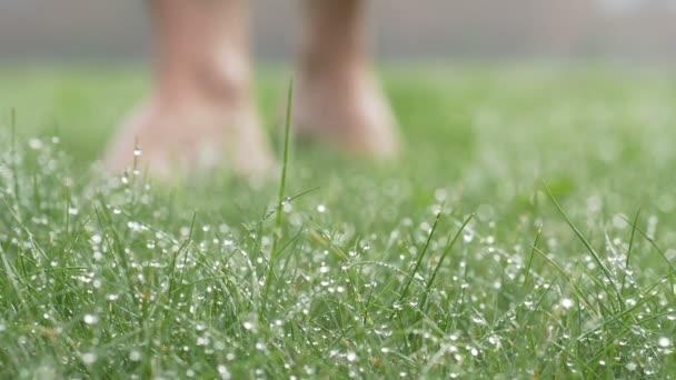 Blote voeten in dauw